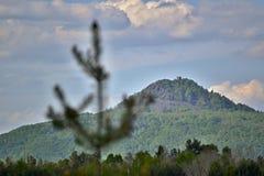 Monte com ruínas de um castelo sob um céu nebuloso com uma árvore borrada no primeiro plano Imagem de Stock Royalty Free