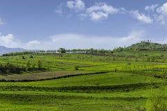 Monte da casa da exploração agrícola Imagens de Stock Royalty Free