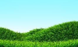 Monte da grama Foto de Stock