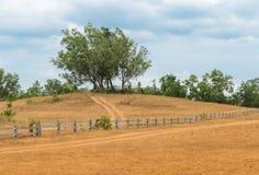 Monte da grama ou monte calvo em Tailândia Fotos de Stock