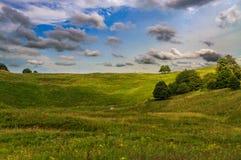 Monte da grama verde e uma árvore Foto de Stock