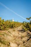 Monte da vila de Fleurie imagem de stock royalty free