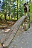 Monte das bruxas Juodkranté lithuania Fotografia de Stock