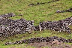 Monte de campos de exploração agrícola na ilha de Corvo em Açores, Portugal fotos de stock royalty free