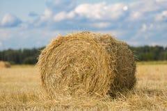 Monte de feno amarelo no campo de trigo sob o céu nebuloso azul bonito imagem de stock