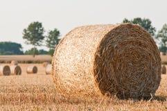 Monte de feno do rolamento no campo do fazendeiro foto de stock