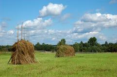Monte de feno grandes no prado Foto de Stock