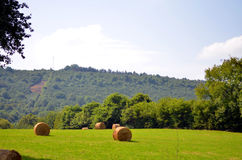 Monte de feno na pastagem das montanhas em alpes franceses fotos de stock royalty free