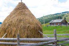 Monte de feno no fundo de florestas decíduos e campos e grama Vila no ecossistema de Carpathians Imagens de Stock