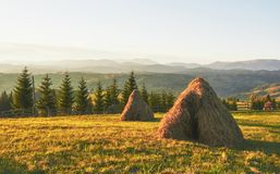 Monte de feno no por do sol Prado, parte da pastagem, especialmente uma usada para o feno Montanhas Carpathian, Ucrânia imagens de stock royalty free