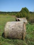 Monte de feno no prado Imagem de Stock
