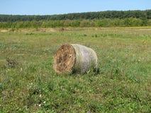 Monte de feno no prado Foto de Stock Royalty Free