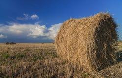 Monte de feno no prado Imagem de Stock Royalty Free