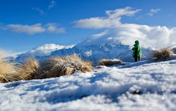 Monte de Poon Fotos de Stock