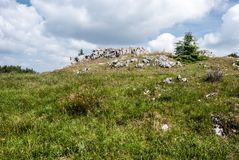 Monte de Skalky com prado da montanha, poucas árvores pequenas e as rochas pequenas em montanhas de Lucanska Mala Fatra em Eslová Fotografia de Stock Royalty Free