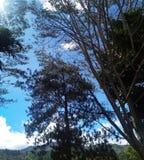 Monte de Sungai Penuh fotografia de stock