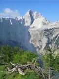 Monte de um pico de Jalovec Foto de Stock