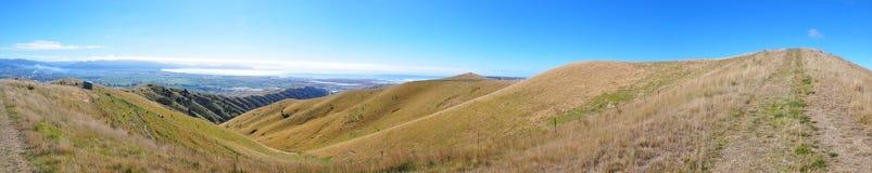 Monte de Wither Foto de Stock