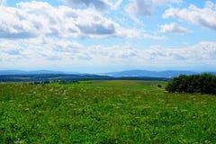 Monte de Witthoh em Alemanha Foto de Stock