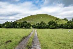Monte de Worsaw, Clitheroe, Reino Unido Fotografia de Stock