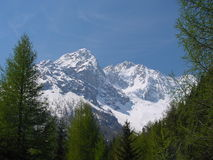 Monte Disgrazia Image stock