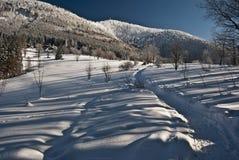Monte do hora de Lysa de Butoranka Foto de Stock