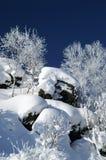 Monte do inverno fotografia de stock