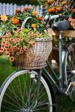 Monte en bicicleta adornado con las flores Imagenes de archivo