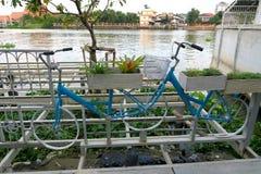 Monte en bicicleta con la flor en la cesta cerca de un río Fotos de archivo libres de regalías