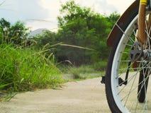 Monte en bicicleta con los árboles y las plantas en el fondo Imágenes de archivo libres de regalías