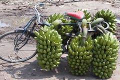 Monte en bicicleta con los plátanos en África Fotografía de archivo