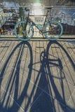 Monte en bicicleta con una sombra en un sendero cerca de puesta del sol Imagenes de archivo