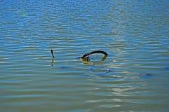 Monte en bicicleta en el lago Foto de archivo
