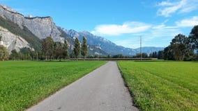 Monte en bicicleta la manera a lo largo de campos verdes en Sargans, Suiza imagen de archivo