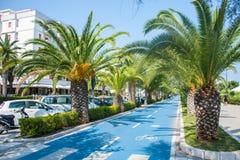 Monte en bicicleta la pista en la costa adriática de la costa de mar de la ciudad Alba Adriatica en Italia, palmeras en los lados Fotos de archivo