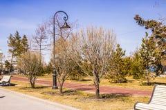 Monte en bicicleta la trayectoria en el parque de la ciudad en la primavera Foto de archivo libre de regalías