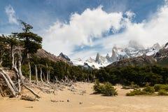 Monte Fitz Roy panorama, Patagonia Stock Photos