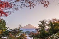 Monte Fuji com mudança das folhas de bordo à cor do outono Imagens de Stock Royalty Free