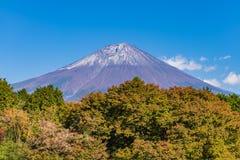 Monte Fuji com mudança das folhas de bordo à cor do outono Imagem de Stock