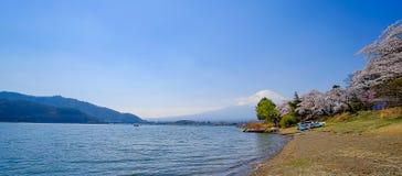 Monte Fuji com o céu tampado, azul da neve e a árvore bonita de Cherry Blossom ou cor-de-rosa de Sakura da flor na estação de mol foto de stock