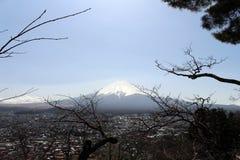 Monte Fuji como visto do pagode de Chureito Quando a religião encontrar nat imagens de stock royalty free