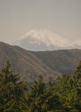 Monte Fuji e Hakone Imagens de Stock