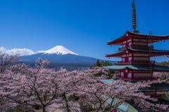 Monte Fuji, um pagode cinco-contado e árvores de cereja imagens de stock royalty free