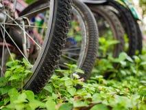 Monte las bicis y ahorre el ambiente Fotos de archivo libres de regalías