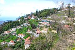 Monte, madera, Portugalia Obraz Stock