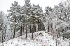 Monte na opinião do inverno Imagem de Stock