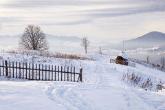 Monte nevado Fotografia de Stock