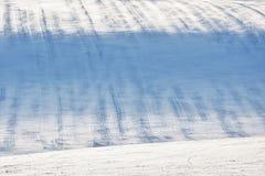 Monte nevado com as listras no campo imagem de stock