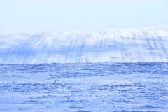 Monte nevado com as listras no campo imagens de stock royalty free