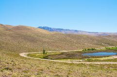 Monte no deserto od Argentina Foto de Stock Royalty Free
